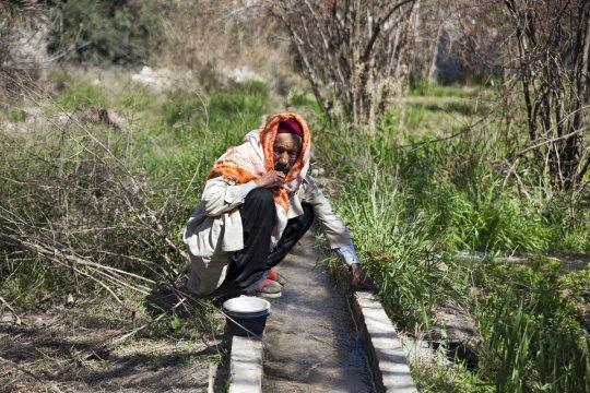 Comment sauver une oasis menacée par la pollution et la sécheresse : en la gérant à la manière d'un bien commun