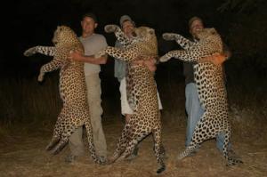 Resolución de la ONU para proteger la vida silvestre