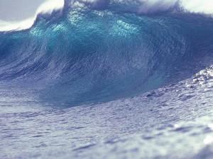 """""""Fluten, Wellen, Ströme"""" – Flüchtlinge sind keine Naturkatastrophe"""