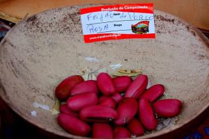 La defensa de las semillas criollas fue eje en el I Congreso del MPA en Brasil