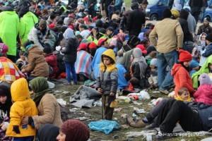 Slovénie : les milliers de personnes en transit ont un besoin urgent d'assistance