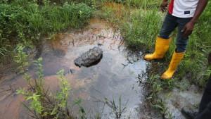 La petrolera Shell no cumple: el delta del Níger que aseguró haber limpiado está contaminado