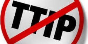 Politicians in UK parliament  said they were worried about TTIP