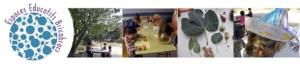 Aprender de forma distinta: Bricabracs, una escuela de edades diversas en Marsella