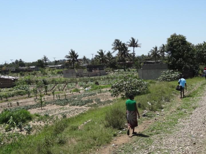 ¿Deberá Mozambique celebrar el nuevo acuerdo climático de París?