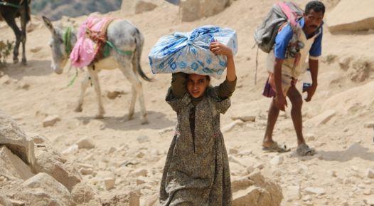 yemen fao