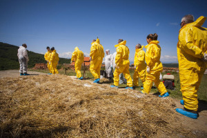 'Overuse of Antibiotics and Other Antimicrobials Threats Rural Livelihoods, Food Security'