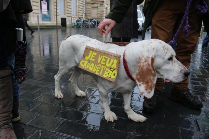 5Marche blanche contre les pesticides à Bordeaux