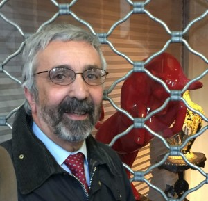Lamacchia: Italicum, questioni di legittimità, vinta la prima di 19 cause