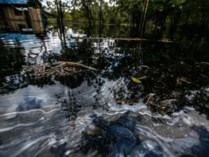 Amazonie péruvienne, un désastre écologique de plus
