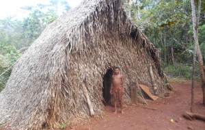 Asegurar derechos indígenas garantiza éxito en mitigación climática