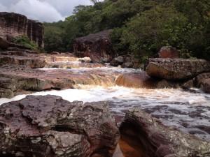 Giornata Internazionale delle Foreste: FAO, nuovo programma che accomuna le foreste all'acqua