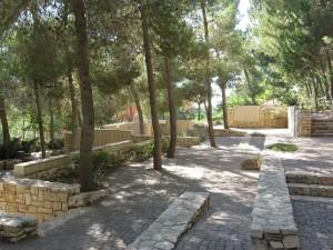 A Tunisi il primo Giardino dei Giusti in un paese arabo