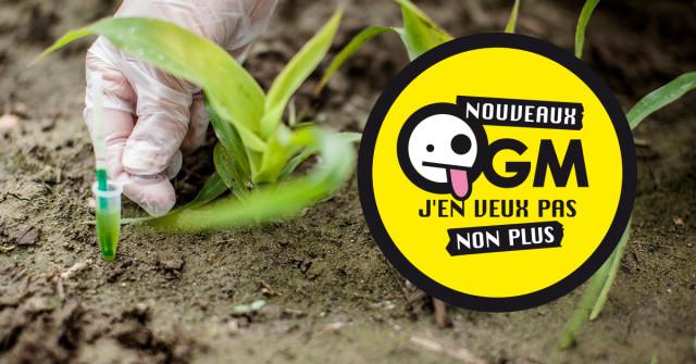 Nouveaux OGM : comment les États-Unis tentent de nous faire avaler la pilule