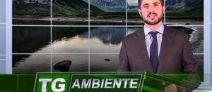 TG Ambiente: tiKotv si tinge di verde