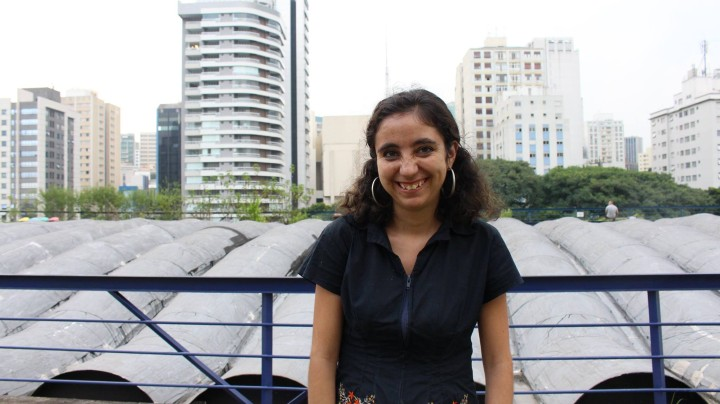 Brasil, terra estrangeira: Um diário das imigrantes