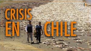 Crisis social y ambiental en Chile