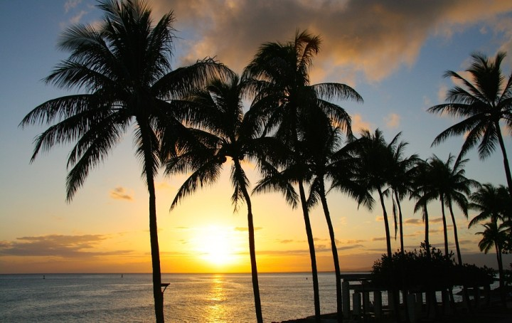 300 economists tell world leaders tax havens 'serve no useful economic purpose'