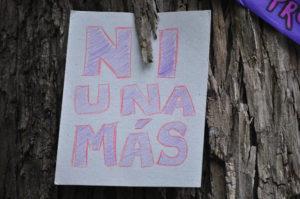 """Campaña """"Ni una más, te lo firmo"""" :  violencia a la mujer y política pública en Ecuador"""