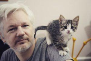 Assange: «El Watergate es una ilusión diseñada por Hollywood»