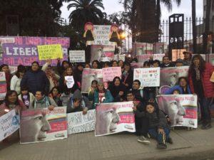 """In Jujuy: die Kampagne """"Ni una menos"""" ruft #LiberenAMilagro"""