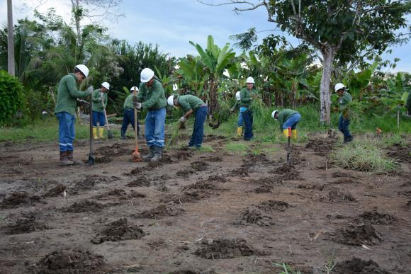 'Amazonía Viva', un proyecto ecuatoriano por la naturaleza y sus habitantes