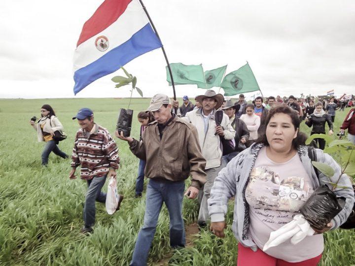 Organizaciones campesinas siguen denunciando que las tierras que hoy día están siendo explotadas por una agroexportadora empresarial son propiedad del estado. Foto: CigarraPy