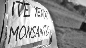 Monsanto se va de Malvinas Argentinas