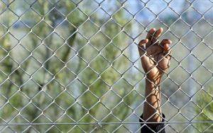 Αίτηση ακύρωσης κατά της ίδρυσης των Ανεξάρτητων Επιτροπών Προσφυγών
