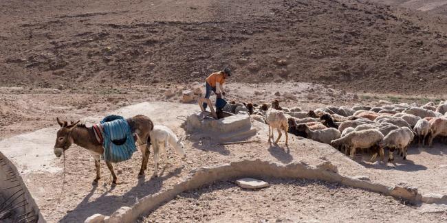 Agricoltori e ambientalisti palestinesi a Coldiretti: Non sponsorizzare Watec