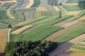 Monsanto-Bayer y el control digital de la agricultura