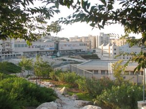 Presentación en el Consejo de Seguridad de la ONU sobre los asentamientos israelíes