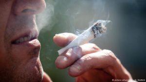 Berlin likely to semi-legalize marijuana