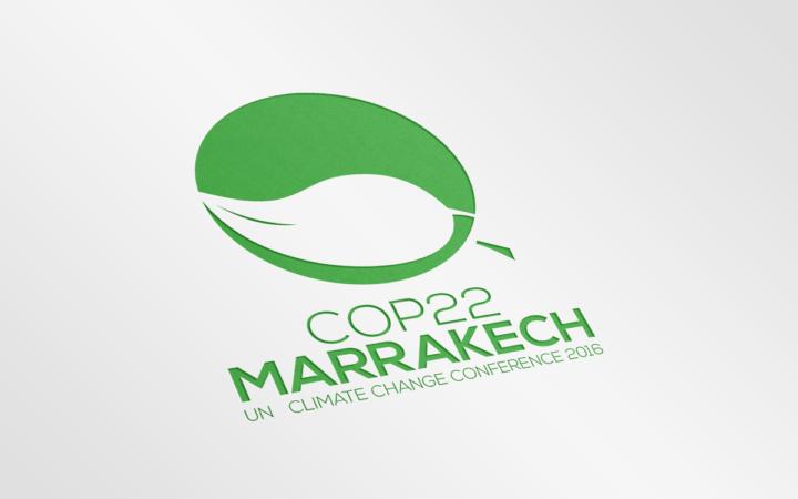 """Greenpeace, Cop22 Marocco: """"serve piano biennale per riduzione rapida delle emissioni"""""""
