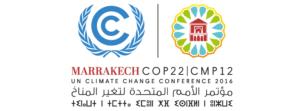 Clima, tutta COP22 in un articolo