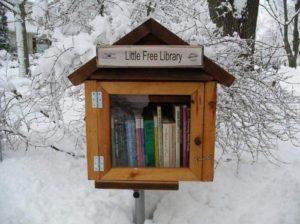 Little free libraries le mini librerie per la condivisione gratuita