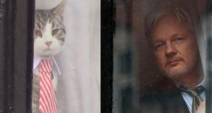 Wie der isländische Innenminister verhinderte, dass das FBI Julian Assange verhaftet