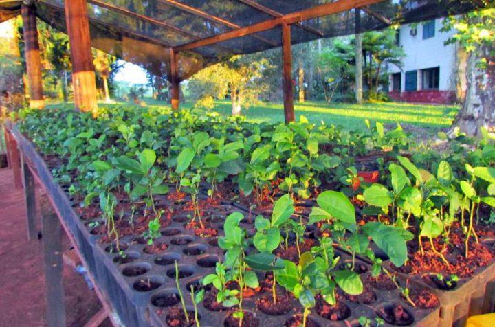 «La agroecología no es para una élite»