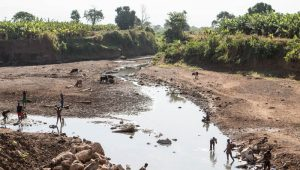 Etiopia: la fame illuminata dalla luce elettrica!