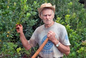 Agroecología: «Nunca trabajé con venenos y voy a morir sin venenos»