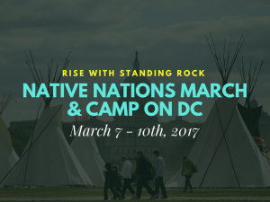 10. März 2017: Native March in Washington DC