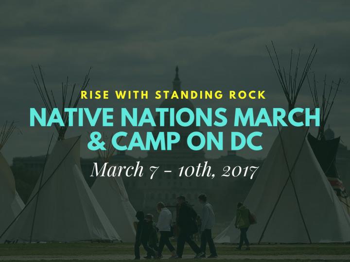 10. März 2017: Native March in Washington DC