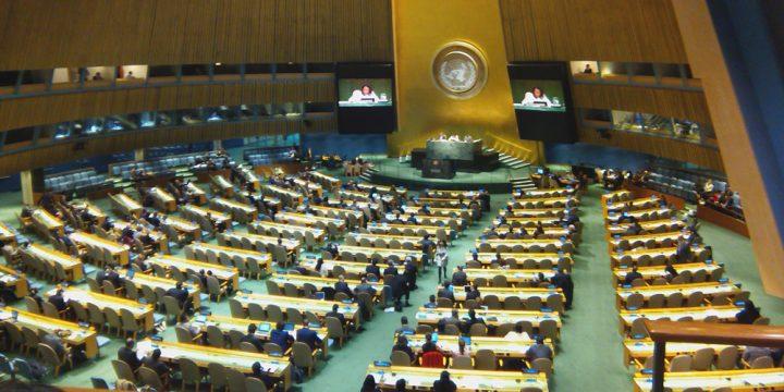 Defending the UN against Trump's erasing the UN