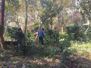 EZLN: La primera de varias