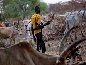 Nigeria: al via la nuova politica di immigrazione contro terroristi e pastori nomadi stranieri