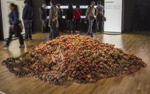 Il Comune di Capannori contro lo spreco alimentare