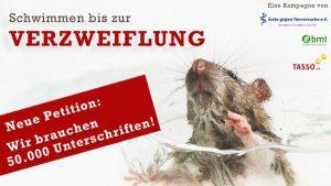 E-Petition: Grausamste Tierversuche – die Spitze des Eisbergs