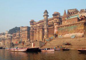 Al posto delle palme i giacinti per depurare gli affluenti del Gange