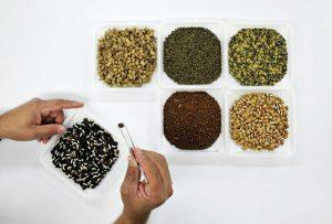 Lobby para apropiarse de las semillas