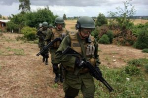 Violento hostigamiento de la policía a comunidades mapuche